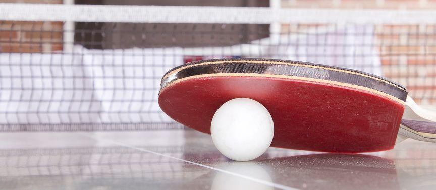 ping-pong-paleta-s