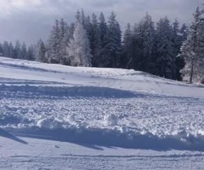 Plan ferii zimowych
